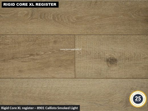 Rigid Core XL Register - 8901 Callisto Smoked Light