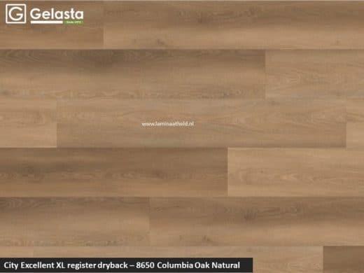 Excellent XL register - 8650 Columbia Oak natural