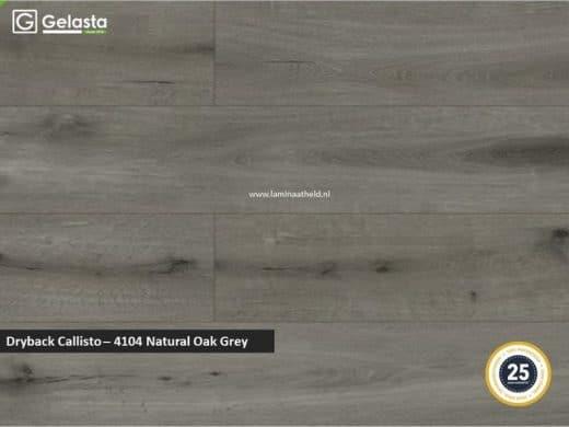 Gelasta Dryback Callisto - 4104 Natural Oak Grey