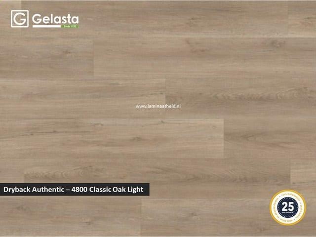 Gelasta Dryback Authentic - 4800 Classic Oak Light