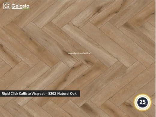 Gelasta Rigid Click Callisto visgraat - 5202 Natural Oak