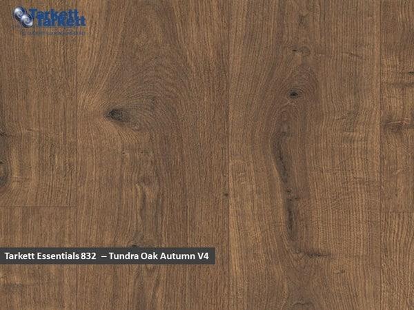 Tarkett Essentials V4 - Tundra Oak Autumn