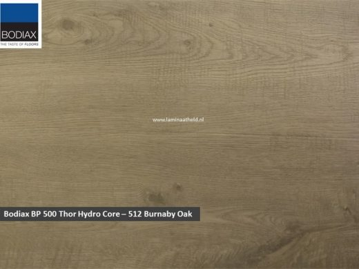 Bodiax BP500 Thor Hydro-core - 512 Burnaby Oak