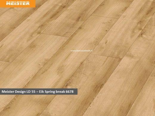 Meister Design LD 55 - 6678 Eik Spring break