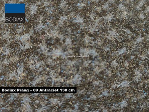 Bodiax Praag schoonloopmat - 09 Antraciet 130 cm