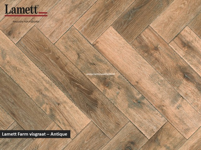 Lamett Fam visgraat - Antique FAR-HB266