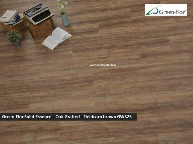 Green-Flor Master Solid Essence - Oak Grafted Fieldcorn brown GW325
