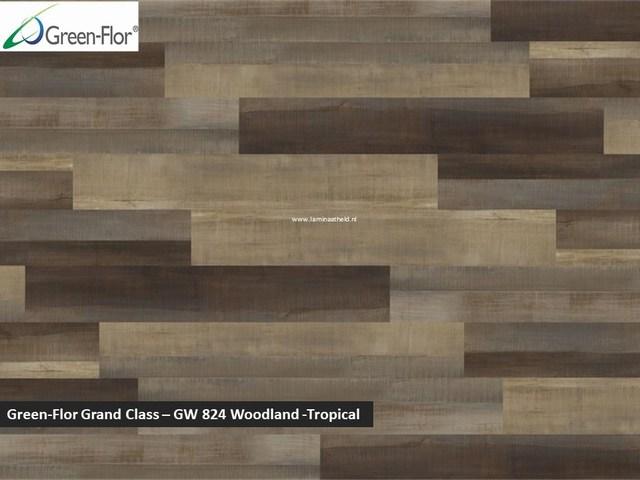 Green-Flor Grand Class - Woodland - Tropical GW824