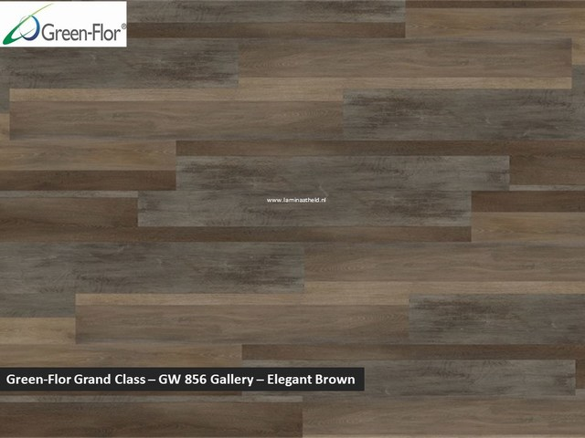 Green-Flor Grand Class - Gallery - Elegant brown GW856