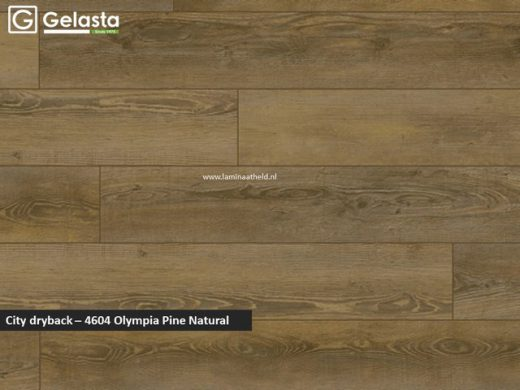 Gelasta City dryback - 4604 Olympia Pine Natural