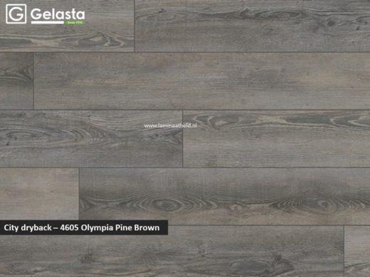Gelasta City dryback - 4605 Olympia Pine Brown