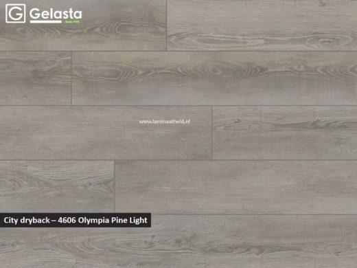 Gelasta City dryback - 4606 Olympia Pine Light