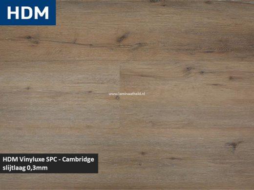 Vinyluxe SPC plank - Cambridge
