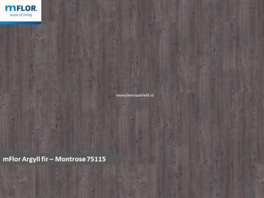mFlor Argill Fir -Montrose 75115