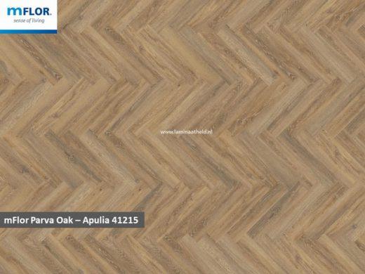 mFlor Parva Oak - Apulia 41215